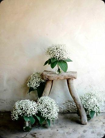 Comme-chez-le-fleuriste._reference2